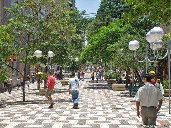 dicas de parques da cidade de londrina
