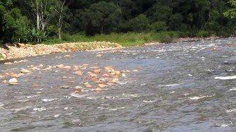 fotos do rio quiriri joinville