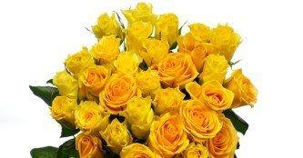 dicas de buquê de rosas amarelas